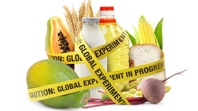 GMODeception9781628736601